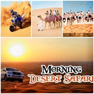Morning desert safari